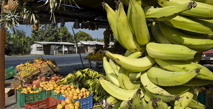 Shopping in the Local Markets